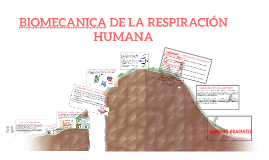 Copy of BIOMECANICA DE LA RESPIRACIÓN HUMANA