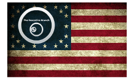 Lecture VII, Part 1: The U.S. Executive Branch