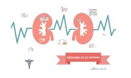 Copy of fisiología de la nefrona