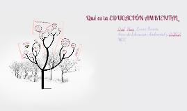 QUÉ ES LA EDUCACIÓN AMBIENTAL PARA UNA GESTIÓN COMPARTIDA