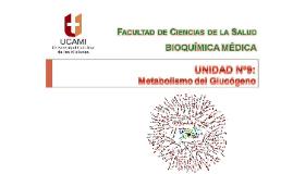 Clase Nº26 Unidad Nº8 Metabolismo del Glucógeno