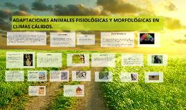 Copy of ADAPTACIONES ANIMALES FISIOLÓGICAS Y MORFOLÓGICAS EN CLIMAS