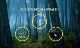 BIOLOGÍA DE LOS ANIMALES