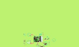 Copy of Nuestros amigos, los caracoles