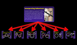 Interpreting Animal Behaviour