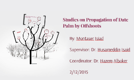 Studies on Propagation of Date Palm by Offshoots