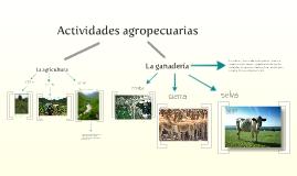 Copy of Actividades agropecuarias