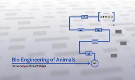Bio Engineering of Animals