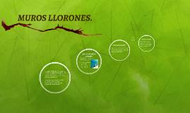 Copy of MUROS LLORONES.