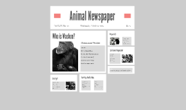 Animal Newspaper