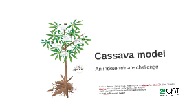 Copy of Cassava model