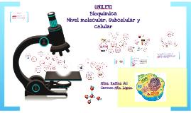 Bioquímica: Nivel molecular y celular