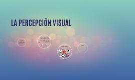 LA PERFECCIÓN VISUAL