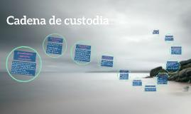 Copy of Copy of Cadena de custodia