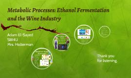 Metabolic Processes: Ethanol Fermentation