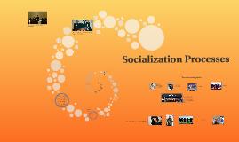 Socialization Processes