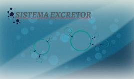 http://www.profesorenlinea.cl/Ciencias/SistemaExcretor.htm