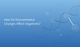 How Do Environmental Changes Affect Organisms?