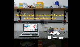 4 Efeito da metformina no metabolismo de animais ovariectomiza