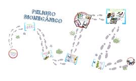Riesgo Biomecanico Exposición
