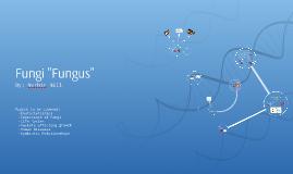 "Fungi ""Fungus"""