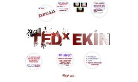 TEDxEKİN