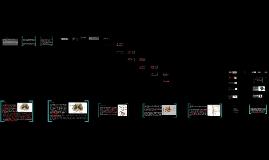 Copy of Sistema Nervioso presentacion