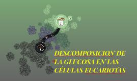 Copy of DESCOMPOSICION DE LA GLUCOSA Y LA CÉLULA EUCARIOTA