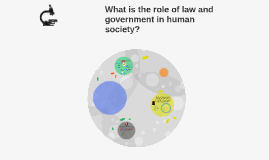 What is the role of law and government in human society?