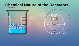 Chemical Nature of the Reactants