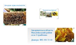 "ПРОДАМ БДЖОЛОПАКЕТИ ""Карпатська бджола"" 095-193-72-43   Дмитро"