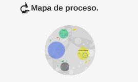 Mapa de proceso.