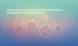 Discuss the use of brain imaging technologies in investigating cognitive processes