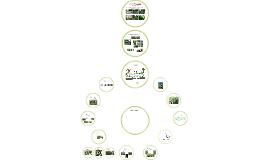 Citizen Riparian Monitoring Protocol