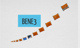 BENE3 REPORT
