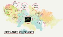 Bonnaroo SubReddit