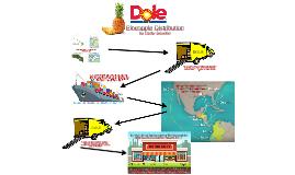 Pineapple Distribution