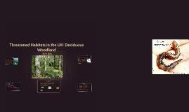 Threatened Habitats in the UK: Deciduous Woodland