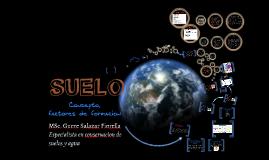 Copy of Suelos I