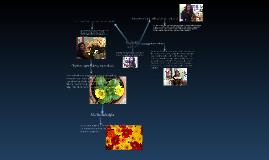 Copy of proyecto   de  informatica