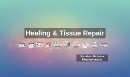 Healing & Tissue Repair