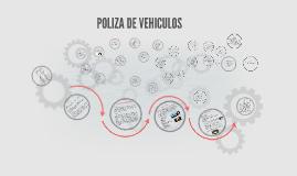 POLIZA DE VEHICULOS.