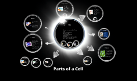 Copy of Parts of a Cell