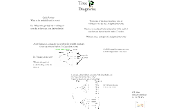 Stats and prob L6 tree diagrams