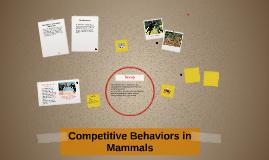 Competitive Behaviors om