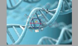 Copy of Gene Discrimination
