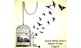 Some birds aren 39 t meant to be caged by cathy recinos on prezi for Some birds aren t meant to be caged tattoo