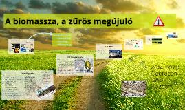 Biomassza, a zűrös megújuló 2014. nov. 11.
