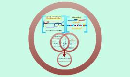 Vergleich der Montagestruktur Rh-AdaS