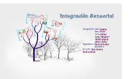 Copy of Integración Sensorial
